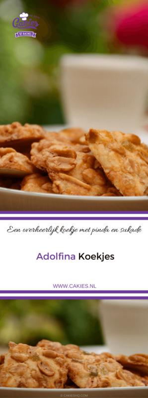 Adolfina koekjes zijn heerlijke pinda en sukade koekjes. Een lekker koekjesdeeg met daar bovenop een mengsel van pinda's en sukade. Probeer ze maar!